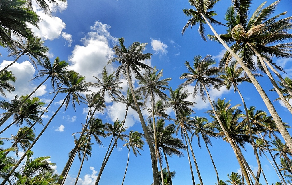An Escape to Paradise in Fiji Islands by JetBlogger Jensen Chua
