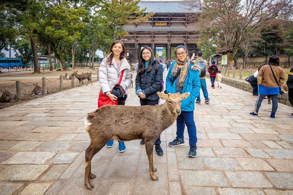 DIY vacation to Kyoto and Osaka